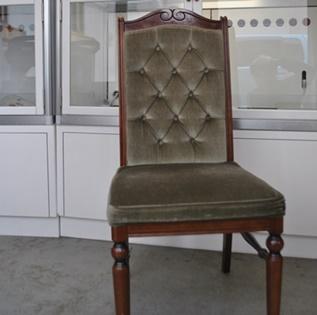 湘南子猫物語店舗内の椅子