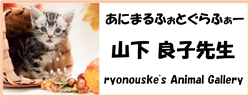 ryonouske's Animal Gallery