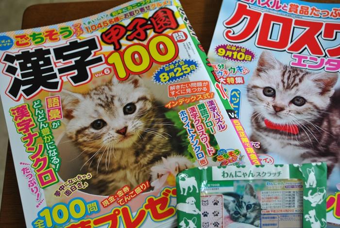 表紙になった雑誌